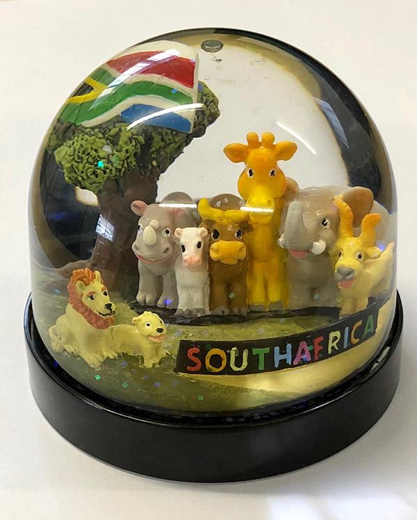 FG3667 South Africa